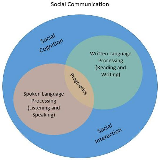 Social_Communication_Image_of_Developmental_Areas